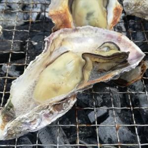 正月 牡蠣キャン!