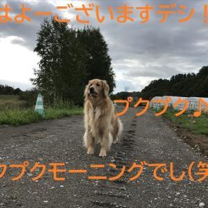 秋の空と空港公園デシ(^-^)/