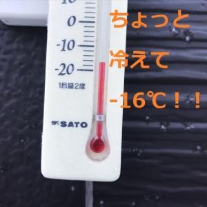 7ゴル♪♪勢揃いデシ♪♪\(^o^)/