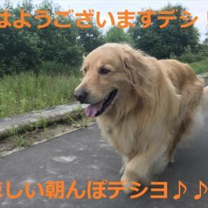 やったね!又当選したデシヨ\(^o^)/