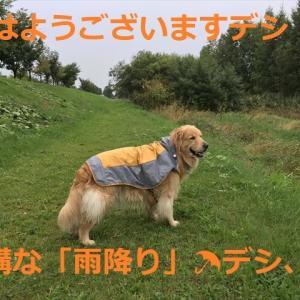 ご当選!!おめでとうございます!デシ\(^o^)/