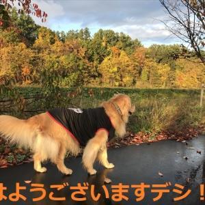 嬉しい出逢いは「妹&姪っ子」デシヨ\(^o^)/