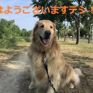 ちょっとお久しぶりのロングドライブ「海へ、オロロンライン」編デシ(^-^)/
