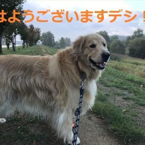 2021年秋「知床キャンプ旅♨」完結編デシヨo(^▽^)o