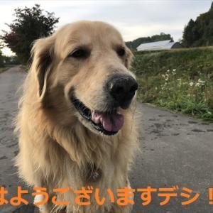 2021年秋「男」3人旅、Ⅲデシヨ(^-^)/