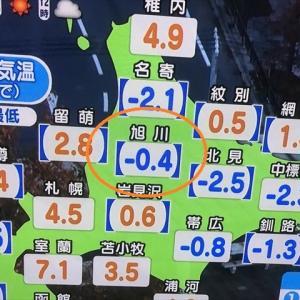 今シーズン「初氷」観測の朝デシ(#^.^#)