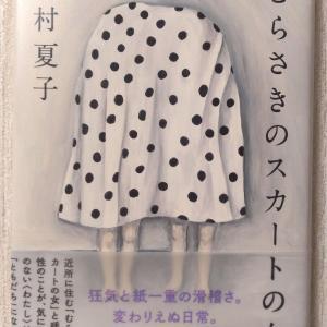 今村夏子「むらさきのスカートの女」の感想 あらすじやネタバレなど【読書】