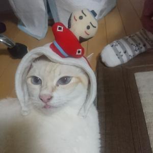 珀ちゃんの頭にお侍さんが!!