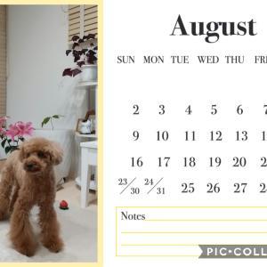8月のお題一覧☆おうちの美化委員