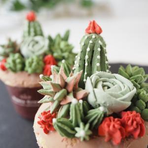多肉植物のカップケーキWS@フェイクスイーツマルシェ