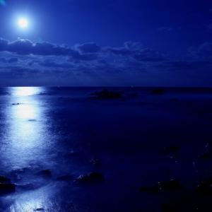#2860 かもめゐる藤江の浦の沖つ洲に ・・・他一首