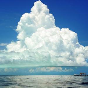 #3209 夏はきぬ相模の海の南風に・・・他一首