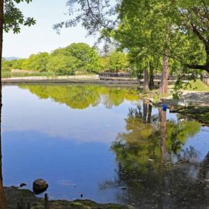 #3216 昆陽の池のみぎはは風の涼しくて・・・他一首と漢詩