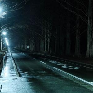 #3268 夜の雨にぬれゆく秋の街並木……他俳句