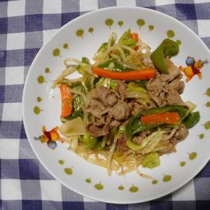 夕飯は豚肉野菜炒めでした