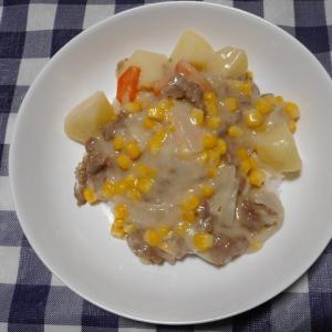 夕飯は北海道クリームシチューでした