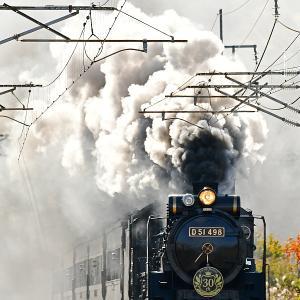 D51498復活30th「煙の輪郭」
