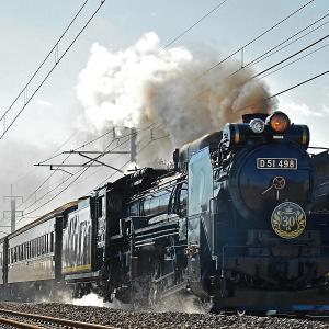 D51498 復活30周年記念 「初日!」
