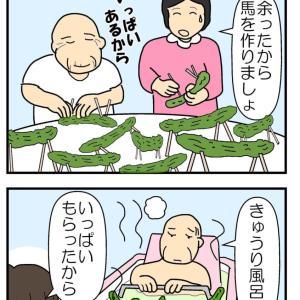 夏野菜の差し入れ