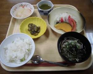 夏の和食ランチ