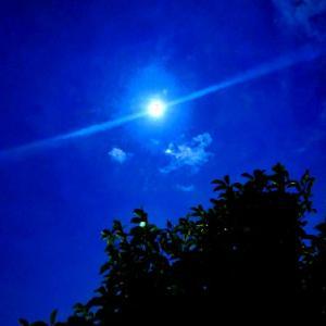 中秋の名月に~自死から逃れるには~【♪どこかのブルース♪】