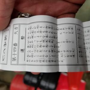 太鼓谷稲荷神社に行ってきました‼️
