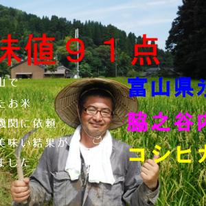食味値91点の高評価!美味しいお米富山県産氷見市里山のコシヒカリ
