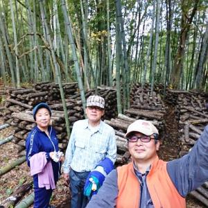 原木椎茸栽培 天地替え