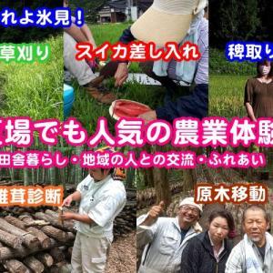 夏場でも人気の農業体験/田舎暮らしや地域の人との交流(富山県氷見市)