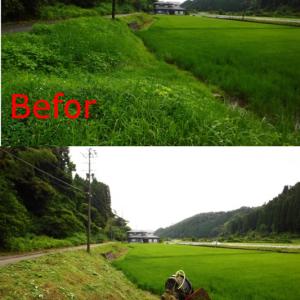 地域支援型農業(CSA)農家と消費者の繋がり_里山の米づくりの苦労 【米づくりの手順】