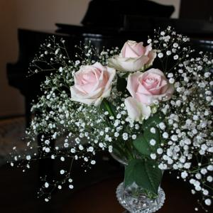 セシリアピアノ教室 レッスン再開のおしらせ♪