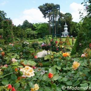 シャクヤクも花盛り パリのバガテル公園