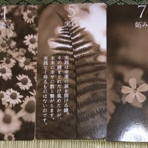 オーラカード126(5/11~5/17)