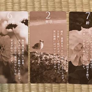 オーラカード146(9/7~9/13)