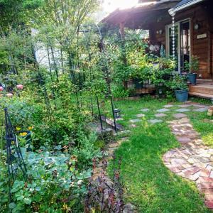 梅雨の晴れ間に庭仕事