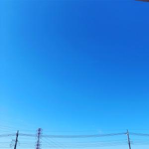 良いお天気