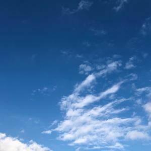 見上げた空と刺繍