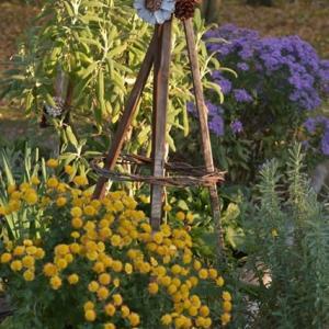 11月の ローコストでローメンテナンスな花壇