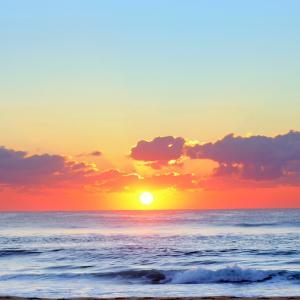 お陰で毎日が新鮮で平和で満たされている感覚です。幸せはいつも側にありました|個人セッションご感想