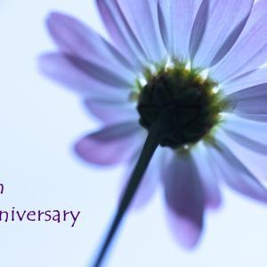 【お知らせ】11周年記念企画、締め切り日のお知らせ