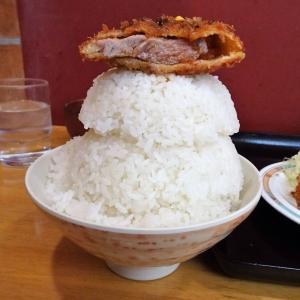 ■早稲田の「オトボケ」で、デカ盛りトンカツ定食!