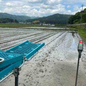 お米作りを楽しもう! 田植えシーズン^ ^