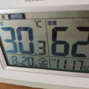 夏の暑さ再び_(^^;)ゞ