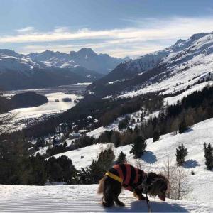 今日は標高2130mで雪山探索…!!