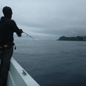 6月28日 ブリジギング 積丹遊漁船 Atuy(アトゥイ)