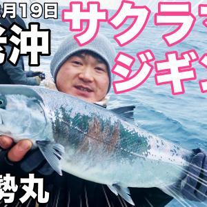 YouTube:2月19日サクラマスジギング@正勢丸