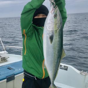 6月12日 ブリジギング 積丹遊漁船 Atuy(アトゥイ)