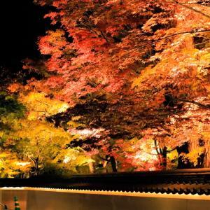 秋は紅葉の…