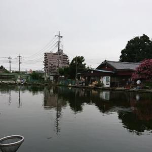 武蔵の池に行ってきた。カッツケセット練習