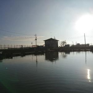 神扇池に行ってきた。天気予報をみなくて